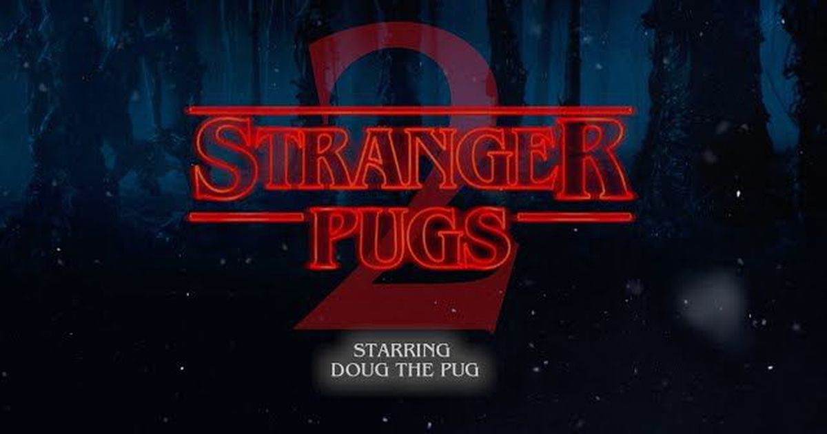doug the pug is more than happy to take on any role in stranger things 2