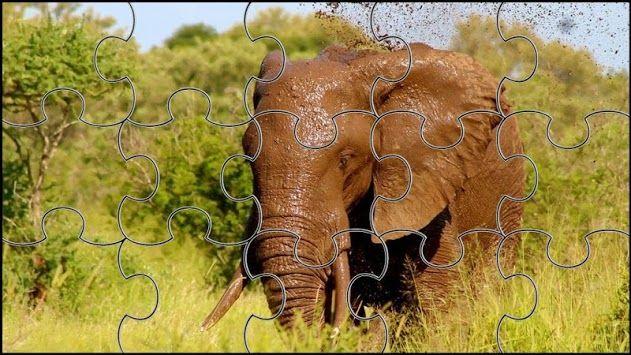 teka teki jigsaw puzzle gajah poster