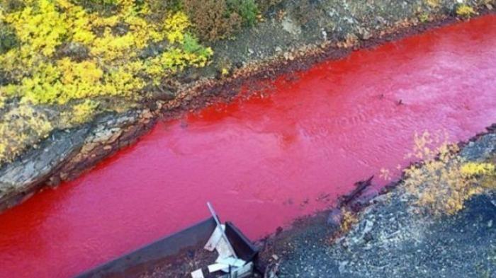 teka teki sungai bewarna merah darah di rusia terjawab